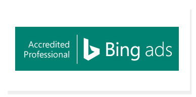 Bing Ads Professional