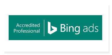 Bing Ads Professional